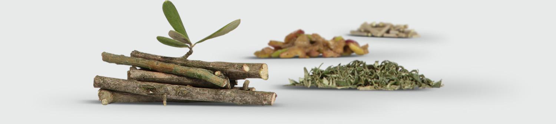 OLIVIE FORCE/RICH ingredients
