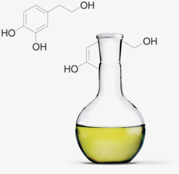 Molecules olive oils